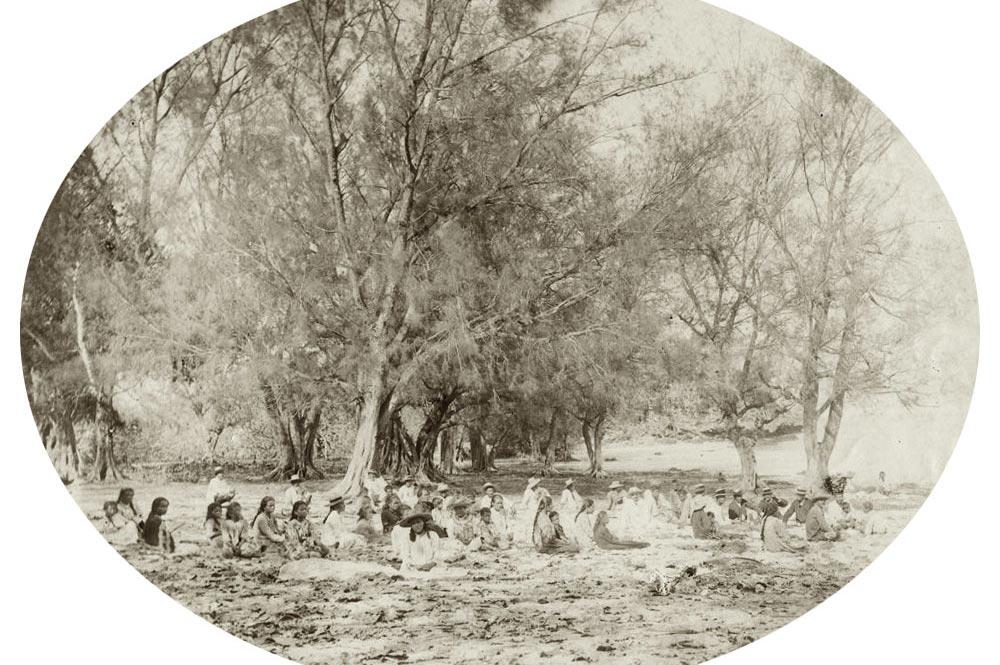 Aspect de la plage de Rimatara où nous avons débarqué le 29 mars 1889