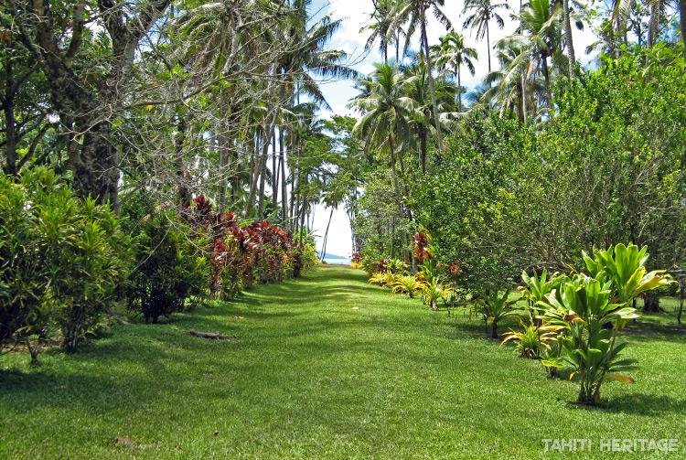 Allée principale d'Akamanu , Gambier © Tahiti Heritage