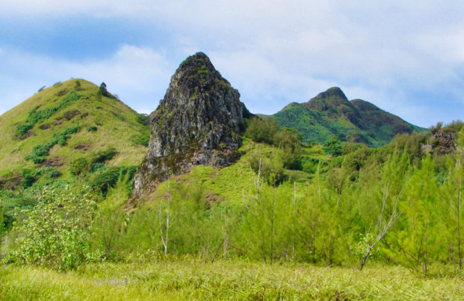 Dent de Pahatu à Tubuai