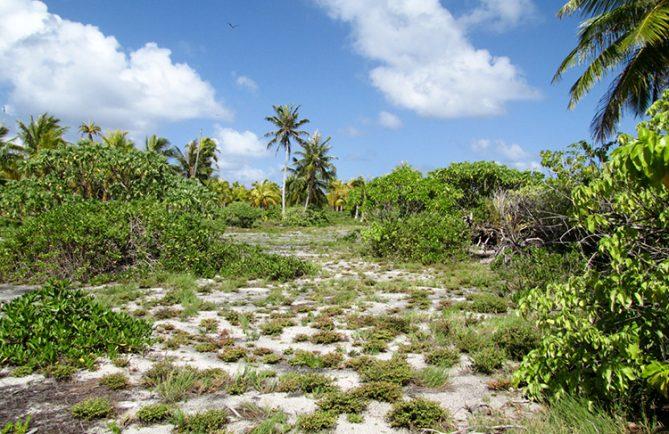 Esplanade des guerriers Tenihinihi à Ahe