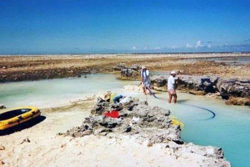 Recherche du trésor des Tuamotu sur l'atoll de Tepoto sud en 1993