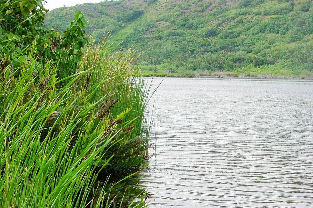 Lac Temae à Moorea