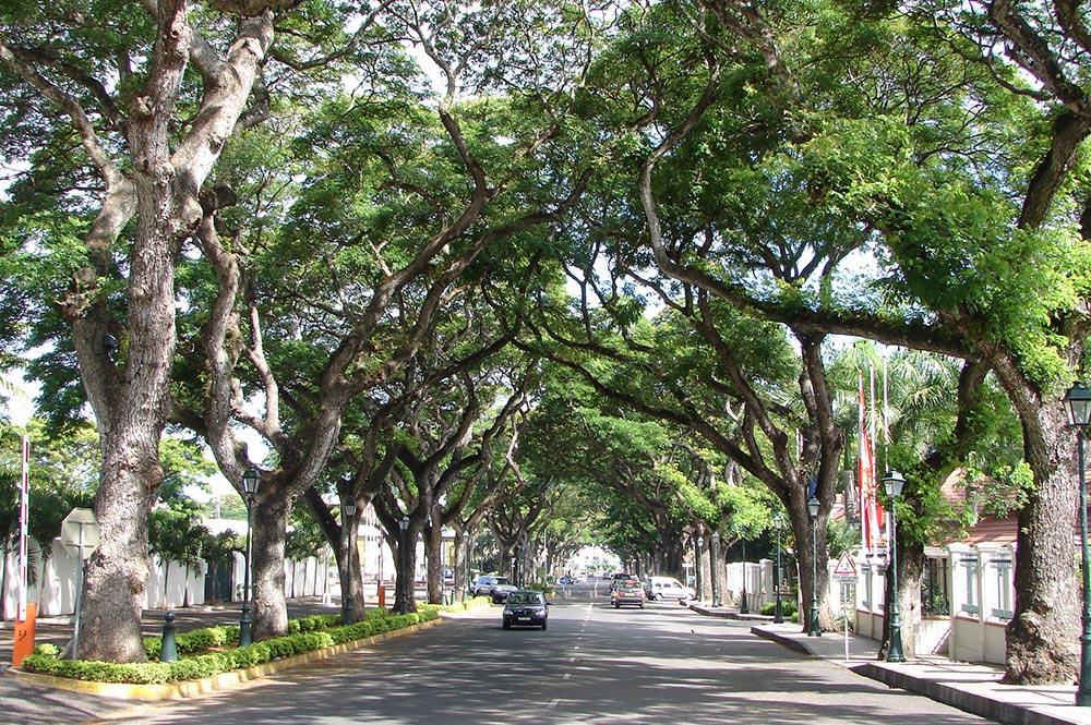 Avenue Pouvanaa a Oopa à Papeete en 2014