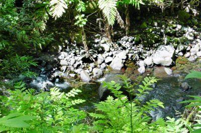 Ofai tere, les pierres qui bougent de la Nahoata