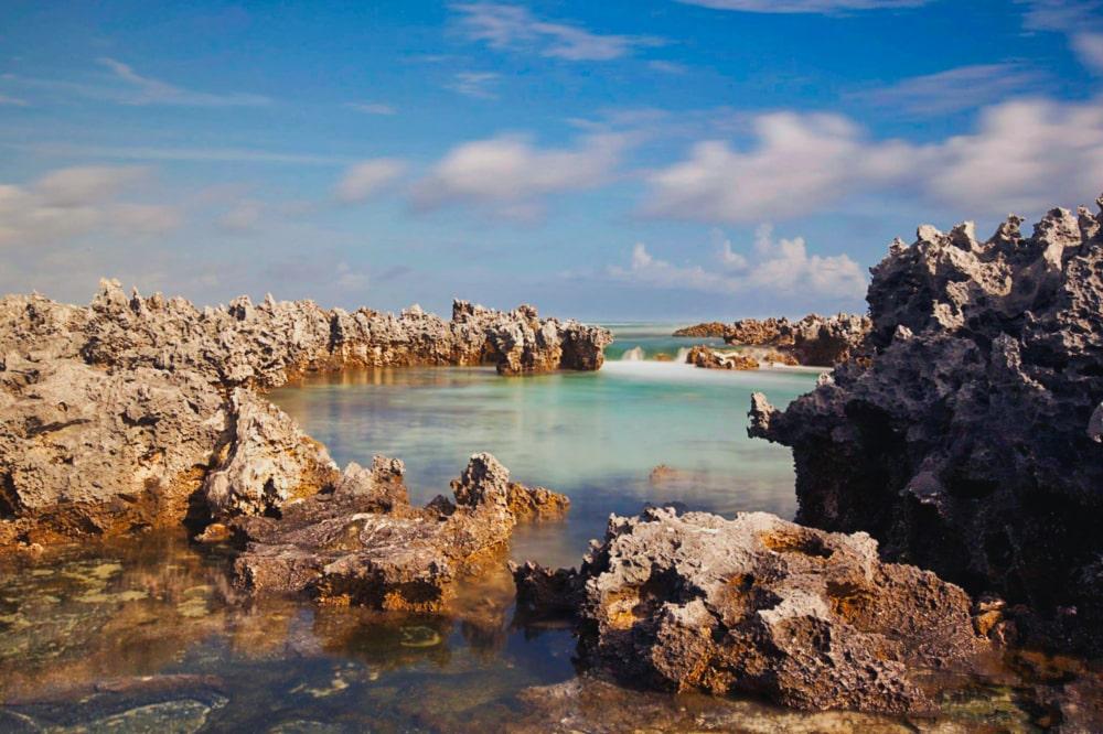 Ile aux récifs, les feo de Rangiroa. Photo Brigitte Bourger