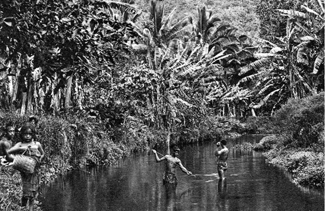 Rivière de Vaitepiha à Tautira, Tahiti