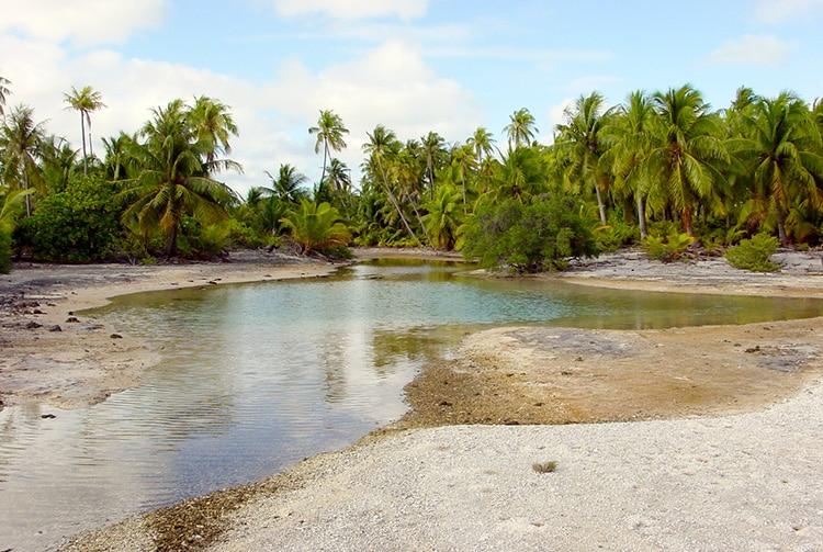 Mare à Kopara du motu Tuoua - Tikehau