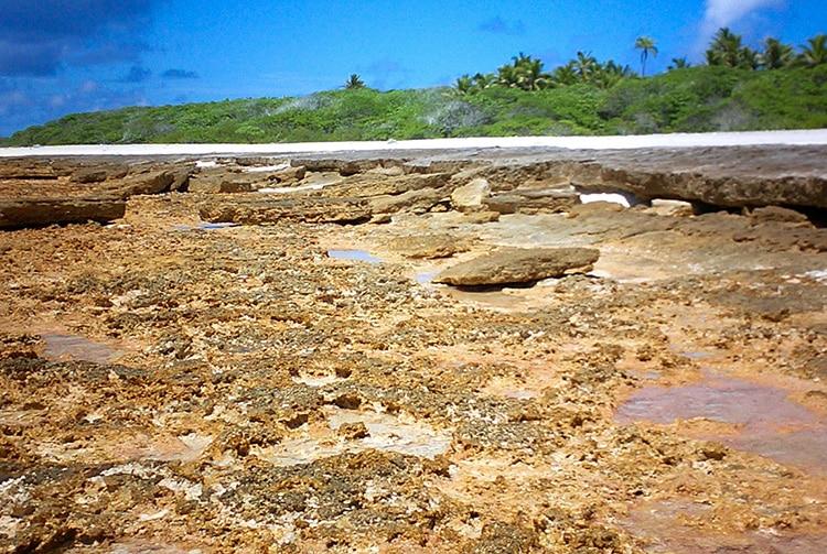 Platier de l'atoll de Teiki, Tuamotu