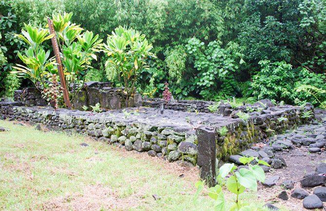 Marae Vaiotea, dans la basse vallée de Papenoo en 2009 © Tahiti Heritage