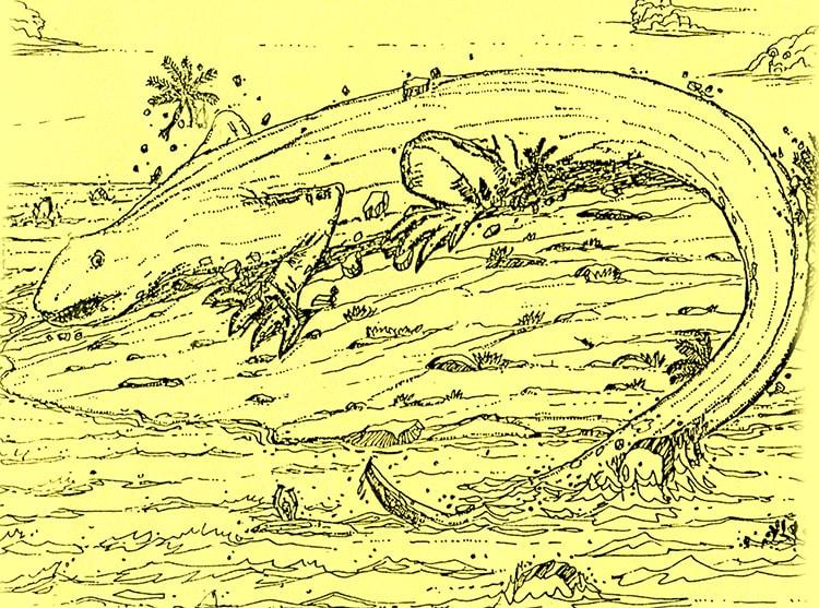 Lézard du motu Mokoki de Hao. Illustration Akeou CPS Hao 2001