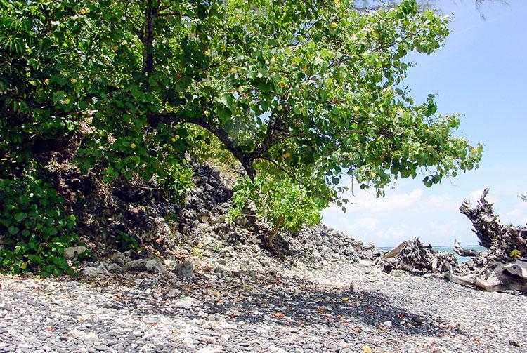 Vestiges du marae Mahaiatea de Papara