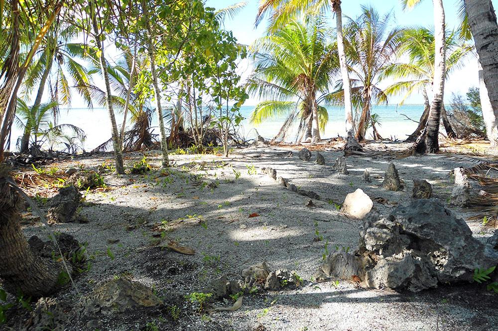 Marae Ura de Niau au Tuamotu. Photo Diren / Paul Niva