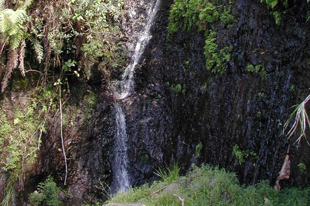 Cascade des 1000 sources à Mahina