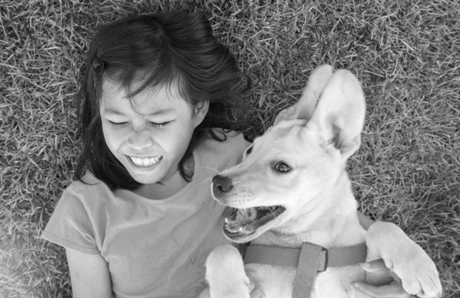Le chien, gardien de la vallée de Tipaerui, Papeete