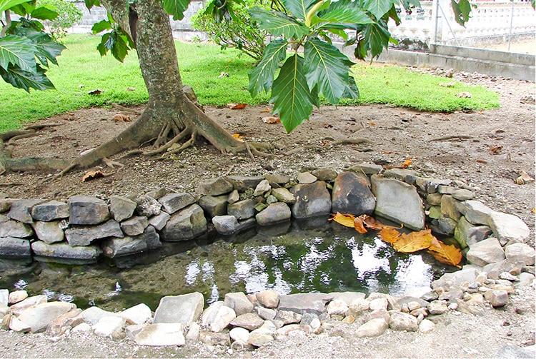 Source Vaipua Maeva, Huahine