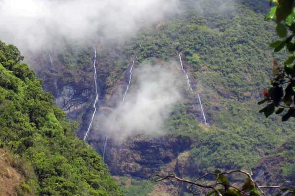 Sentier des 1000 sources à Mahina. Photo Anouck