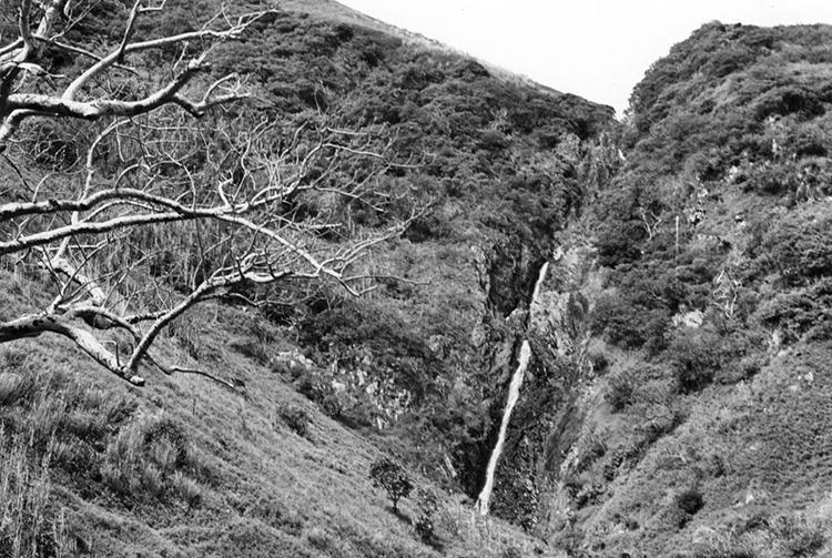 Cascade de la Tumu, Rapa. DEFAP