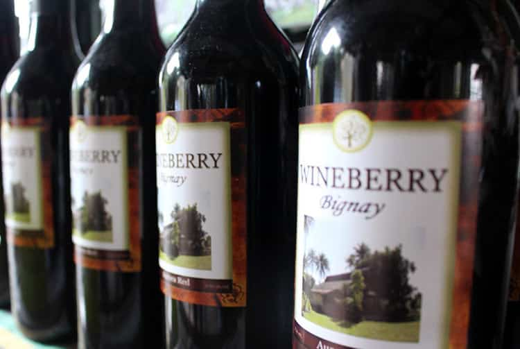 Wineberry, vin de Bignay