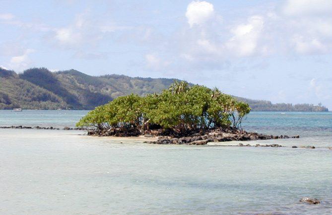 Motu Teakau, Fort Louis Philippe à Rikitea