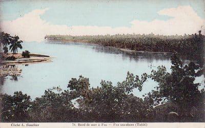 Bord de mer à Faa'a. Tahiti