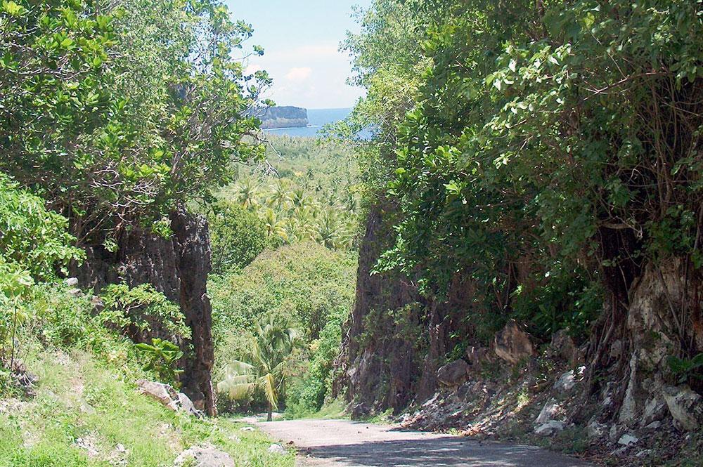 Route de Moumu à Makatea. © Tahiti Heritage