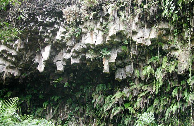 Orgues basaltiques de la bases vallée de Papenoo.