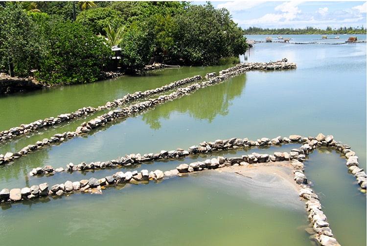 Pièges à poissons du lac Maeva, à Huahine, Iles sous le vent