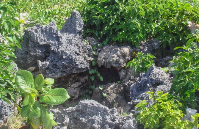 Grotte Opereue à Anaa © Tahiti Heritage