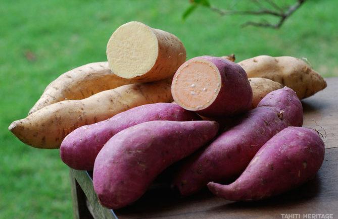Papate douce, Ipomoea batatas, Umara. © Tahiti Heritage