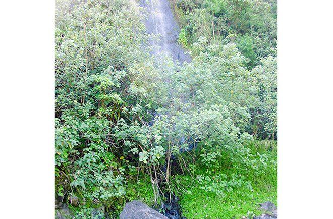Mine de basalte Vaiotea de la basse vallée de la Papenoo © Tahiti Heritage