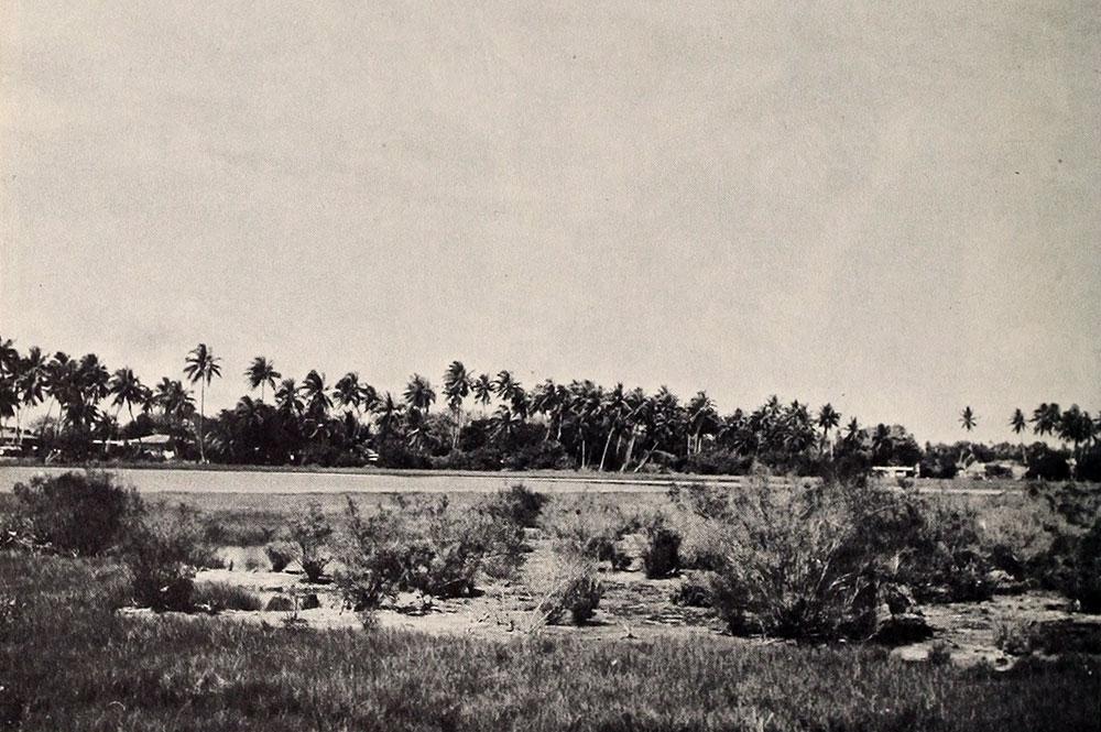 Le lac Tauaraufara de Avatoru en 1951