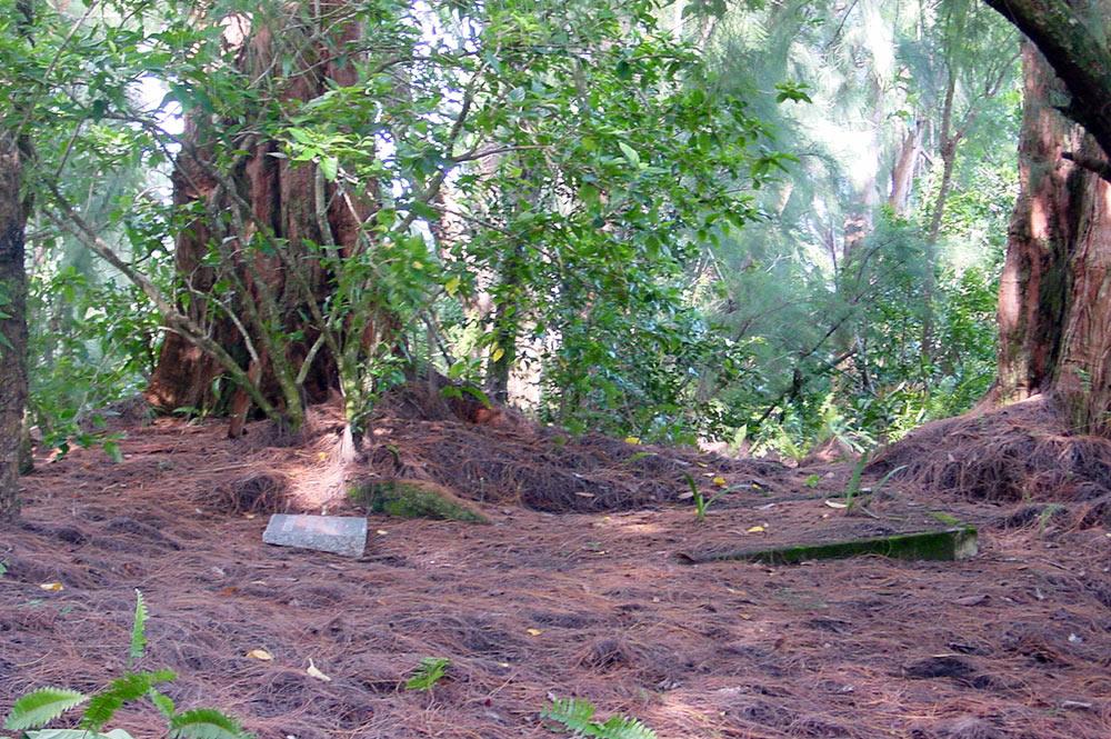 Tombe d'Harrison Smith sur la colline en face du jardin botanique de Tahiti, à Papeari