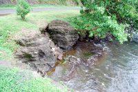 Ofaitere, les pierres marchantes de Papetoai - Moorea