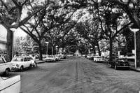 Avenue Bruat à Papeete, vers 1960