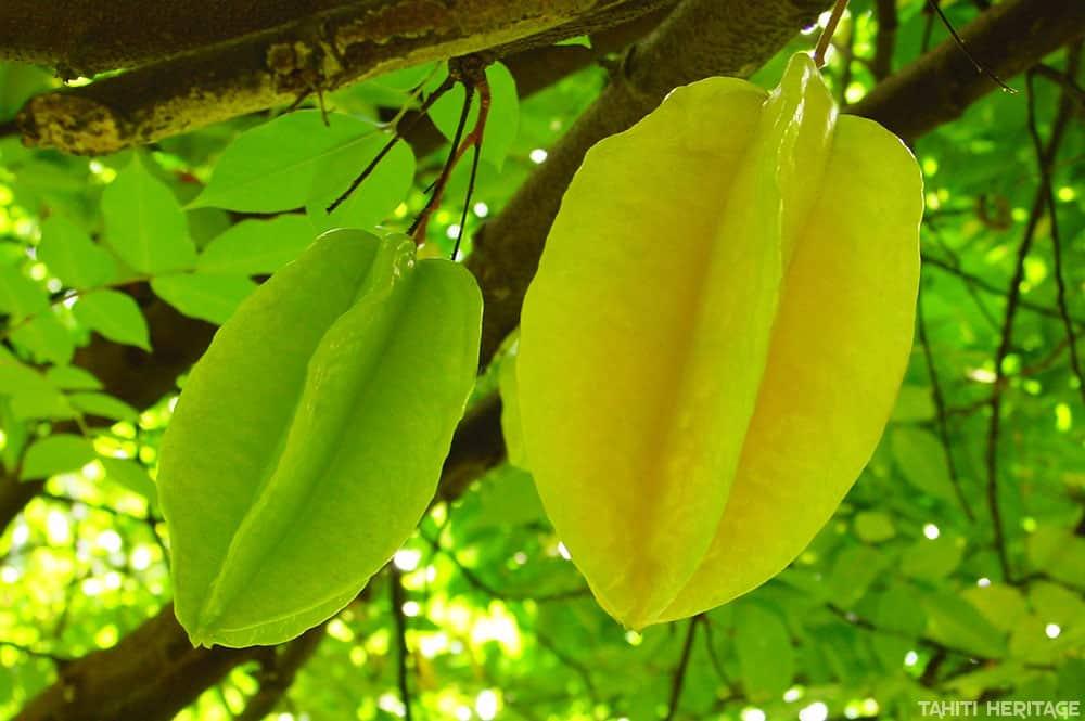 Caramboles de Tahiti - Starfruit © Tahiti Heritage