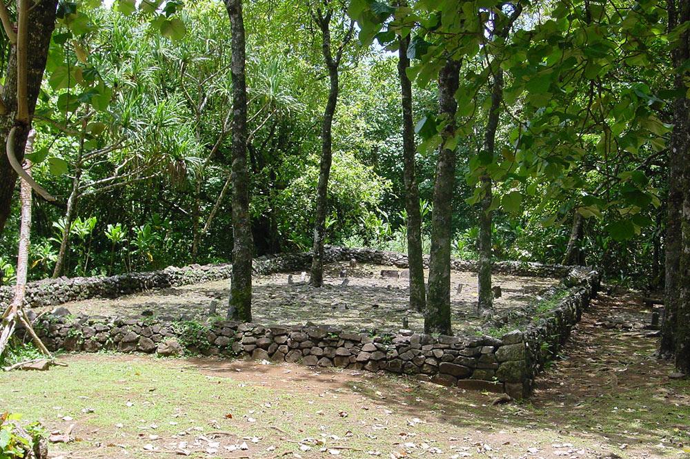 Sentier des ancêtres à Opunohu