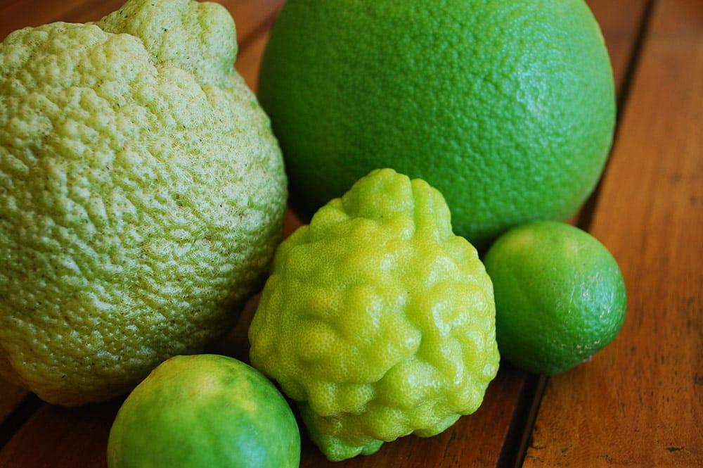 Cédrat, orange, combava et citron vert