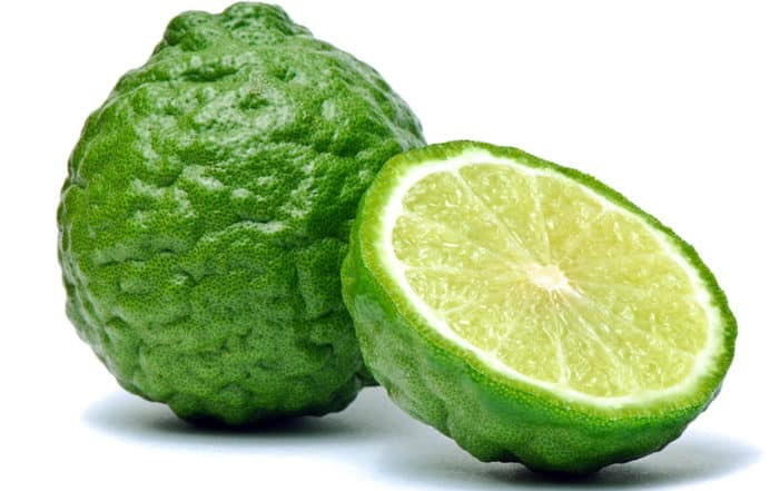 Combava, Citrus hystrix