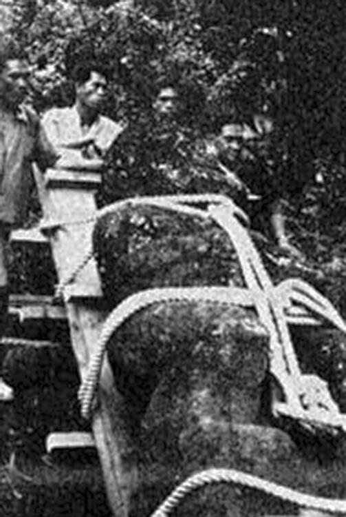 Le transport des tiki de Raivavae de Mamao à Papeari en 1965