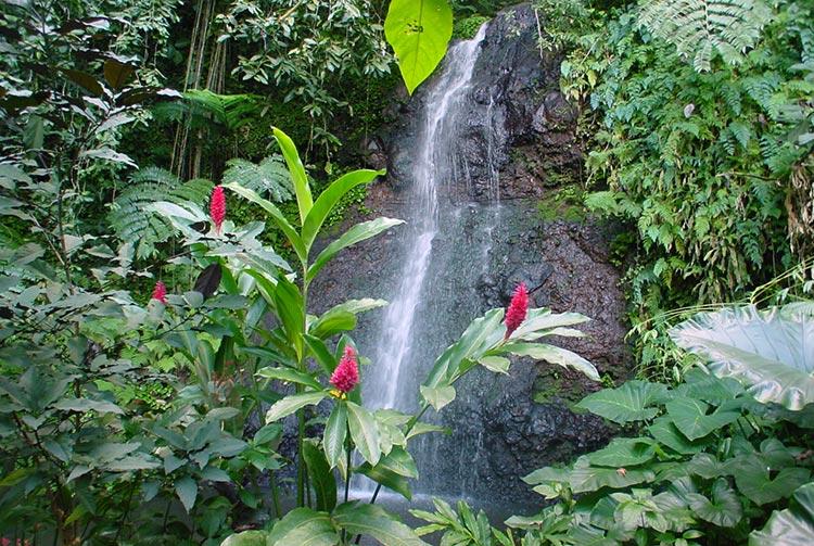 Cascade de Vaipahi, Mataiea, Tahiti © Tahiti Heritage