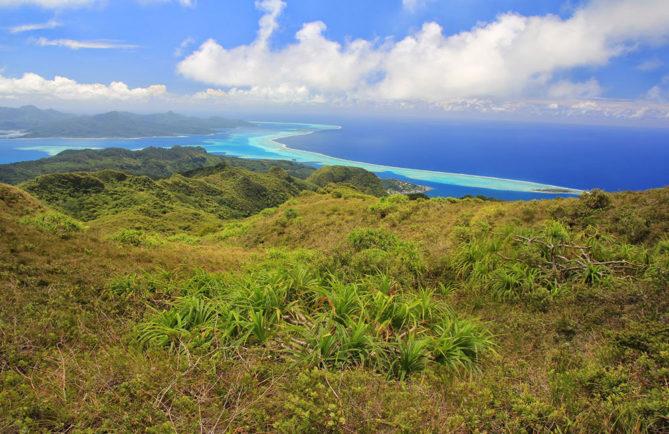 Plateau de Temehani à Raiatea.