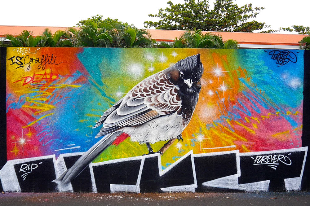 Street art, le bulbul des Williams à Raiatea