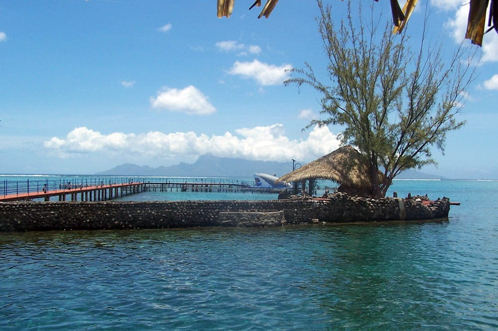 Lagonarium de Tahiti