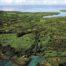 L'isthme de Taravao en 1970