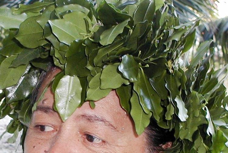 Maire maatea de makatea, Alyxia scandens © Tahiti Heritage