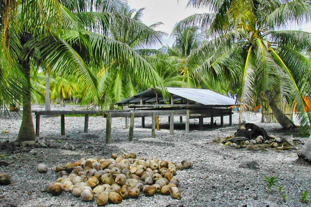 Séchoir à coprah du village de Maragai , atoll de Toau 2004 @ Tahiti Heritage
